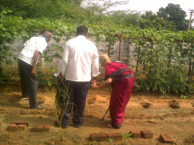 Inspecting kitchen garden