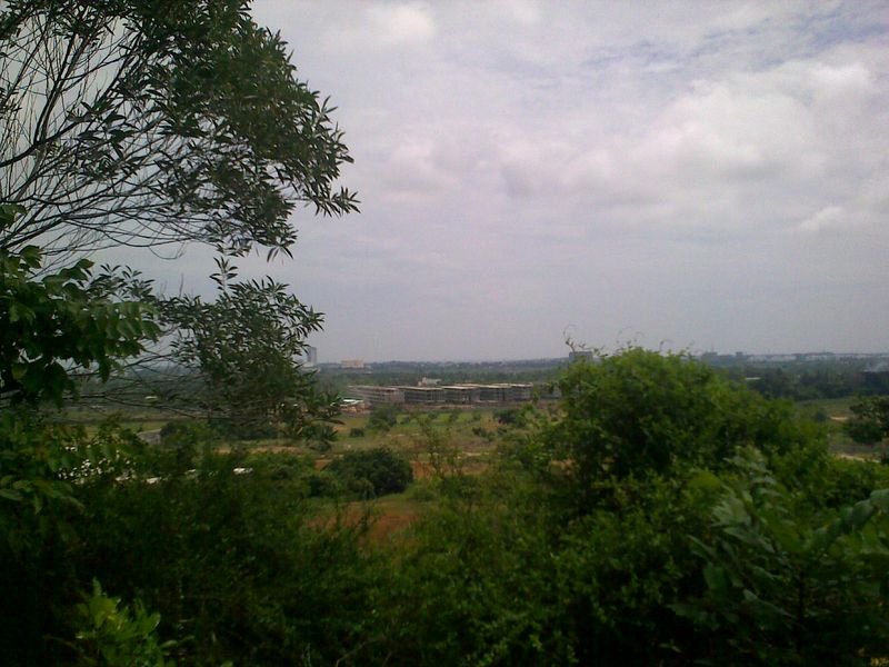 View from hillock